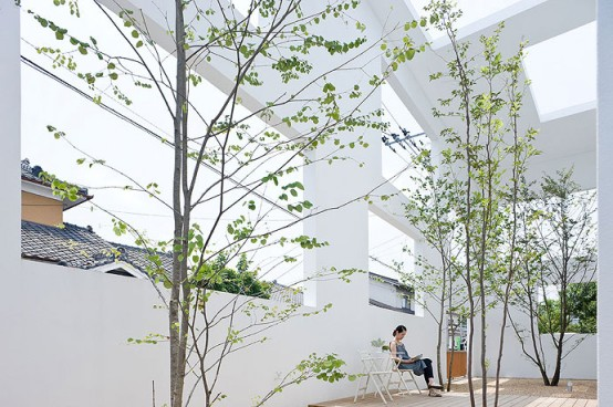 dream-home-indoor-courtyard-2