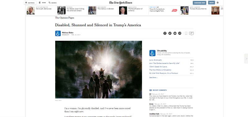My Essay on The New York Times
