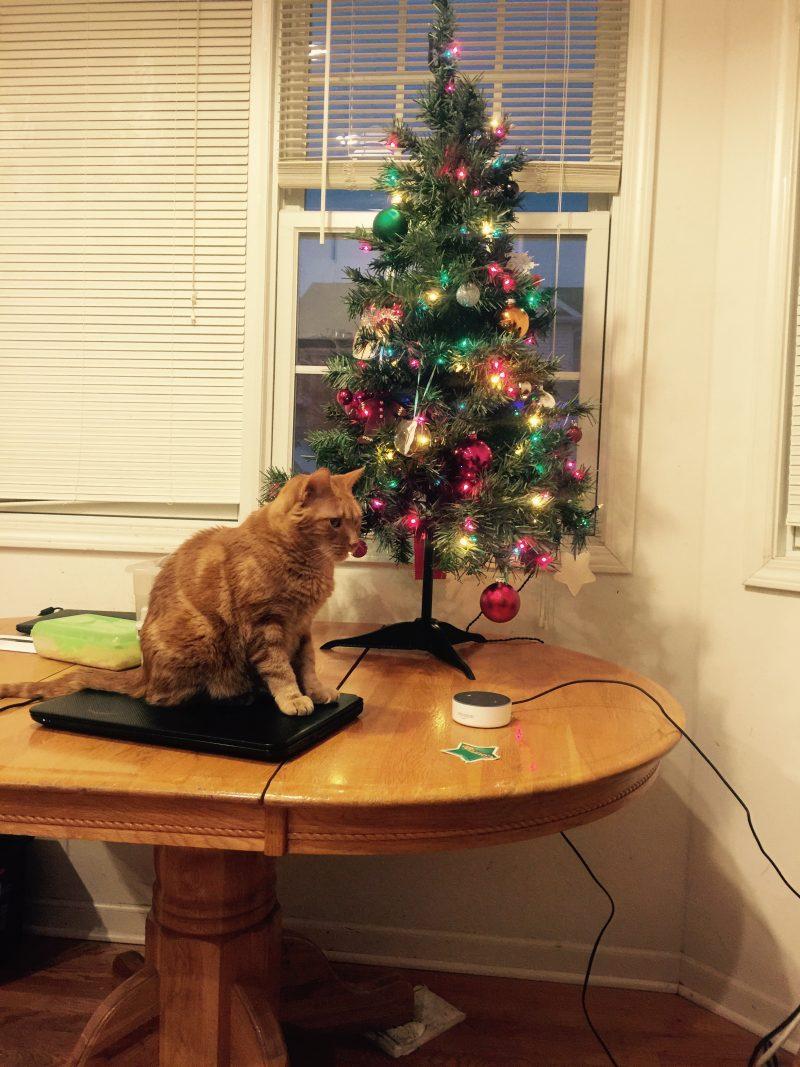 Dreading the Holidays